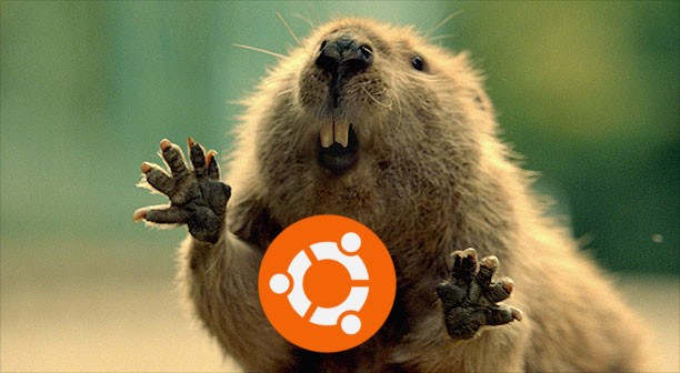 ubuntu server set static ip